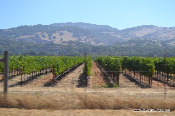 http://getyouinshape.com/wp-content/uploads/2012/08/California2012-284.jpg